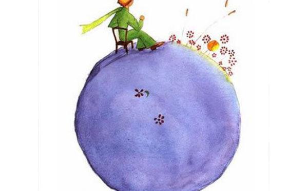 Il Piccolo Principe Art. (4)