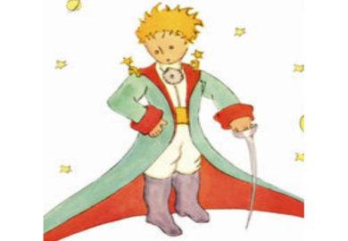 Il Piccolo Principe Art. (5)
