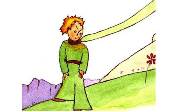 Il Piccolo Principe Art. (6)